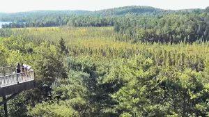 Webcam Ontario